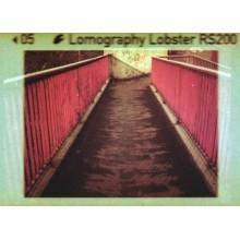 Película 110 Lobster Redscale de Lomography